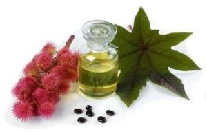 Рицинова (касторова) олія для волосся